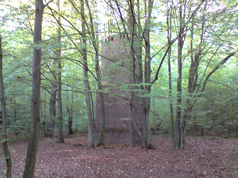 Ukryte w lesnie stanowiska kominów kotłowni węglowej ogrzewającej schron kolejowy dlka pociągu ztabowego Adolfa Hiltera w okolicach Spały. foto wozówka.pl